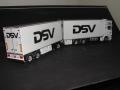 DSV 006